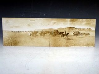 Original Photograph Postcard--Long X Roundup