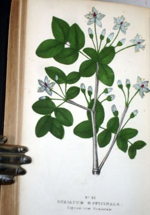 The Family Flora and Materia Medica Botanica,; the Botanical Analysis, Natural History, and Chemical and Medical Properties and Uses of Plants
