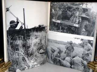 43rd Infantry Division: Pictorial Review of Training